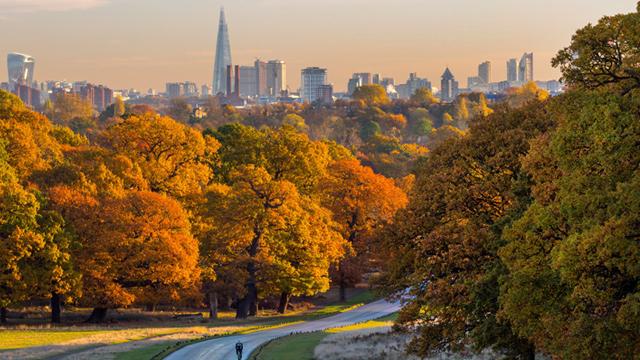 autumn in london 2020